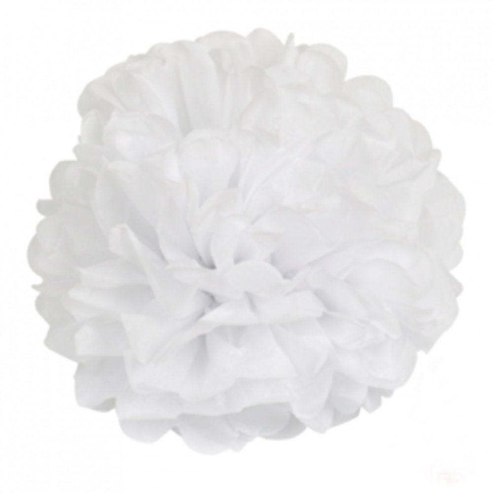 Pompom wit witte pompom