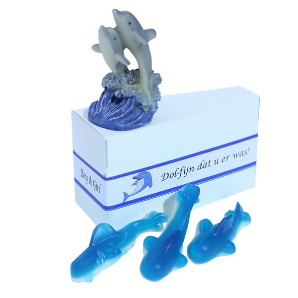 Dolfijn Traktatie