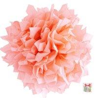 zalm roze pompoms zalm kleine afbeelding